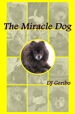 the-miracle-dog-by-dj-geribo-cover-image